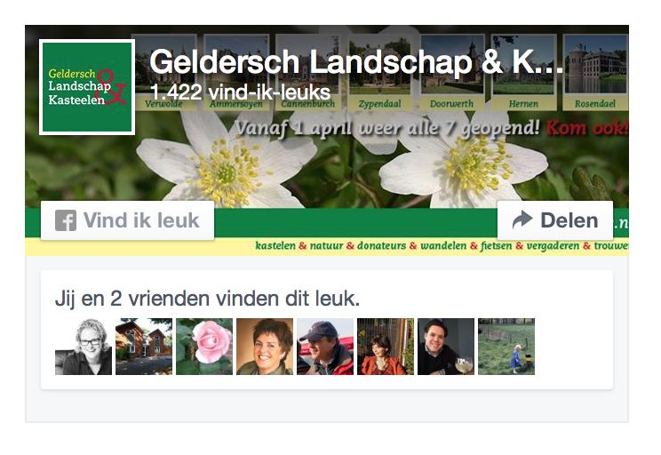 Voorbeeld-nieuwe-Facebook Like Box-blog